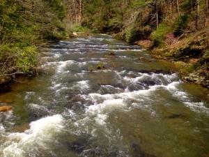 50 Creek