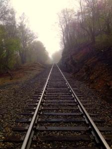 Day 49 Tracks