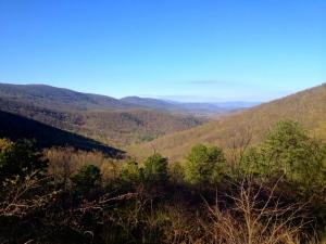 57 mountain view