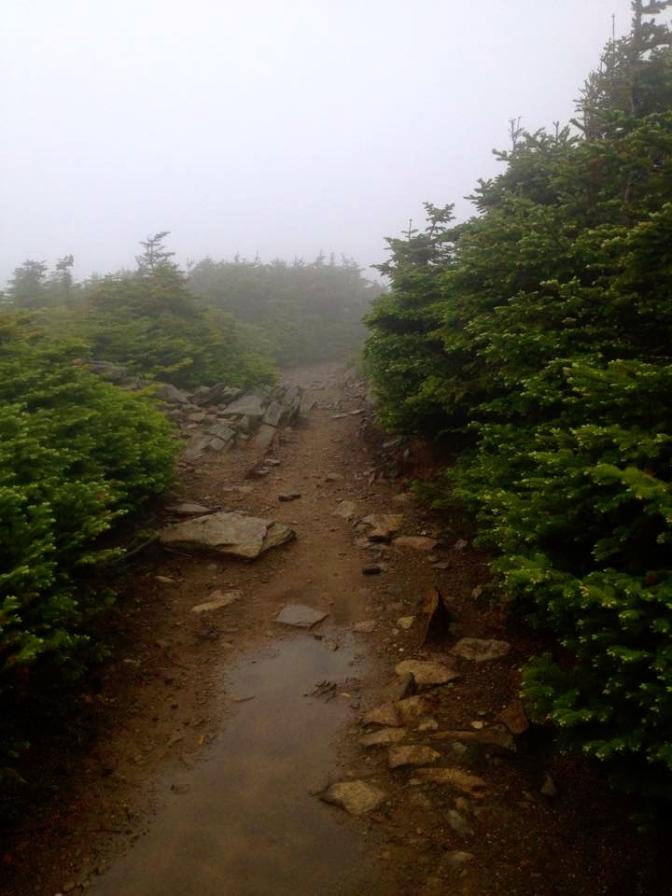 111- trail