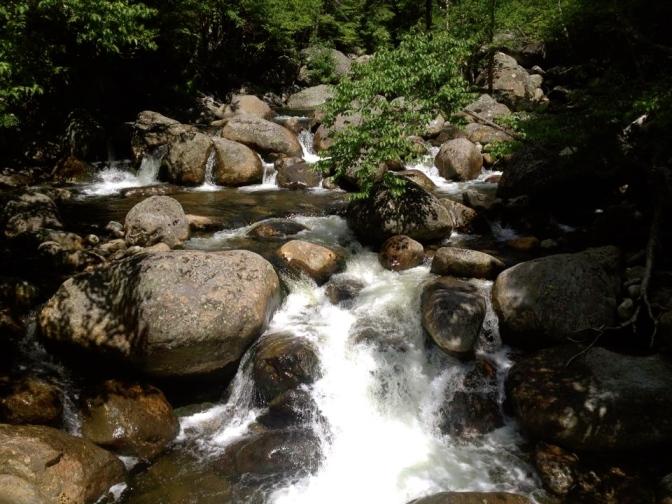 116 Creek