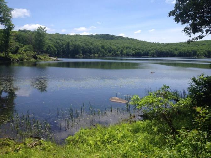 Plutonium lake